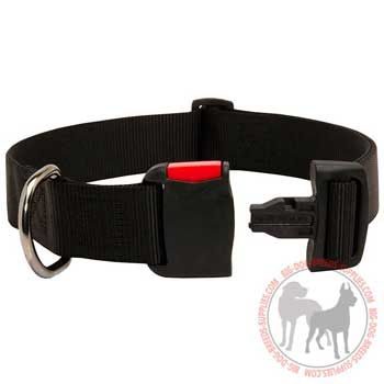 Nylon Dog Collar with Easy in Use Quick Release Buckle