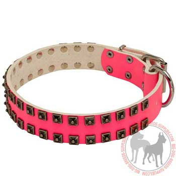 Pink Leather Dog Collar Decorated with Studs