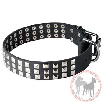 Dog leather collar with rust resistant buckle and D-ring
