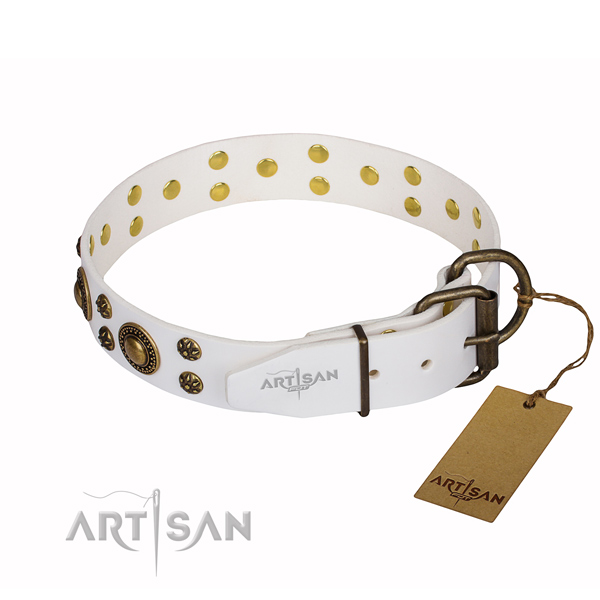 Unusual full grain leather dog collar for walking