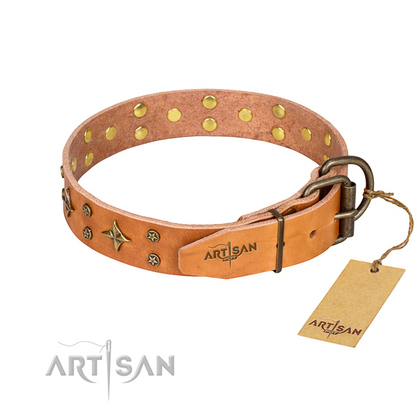Walking full grain genuine leather collar with studs for your dog