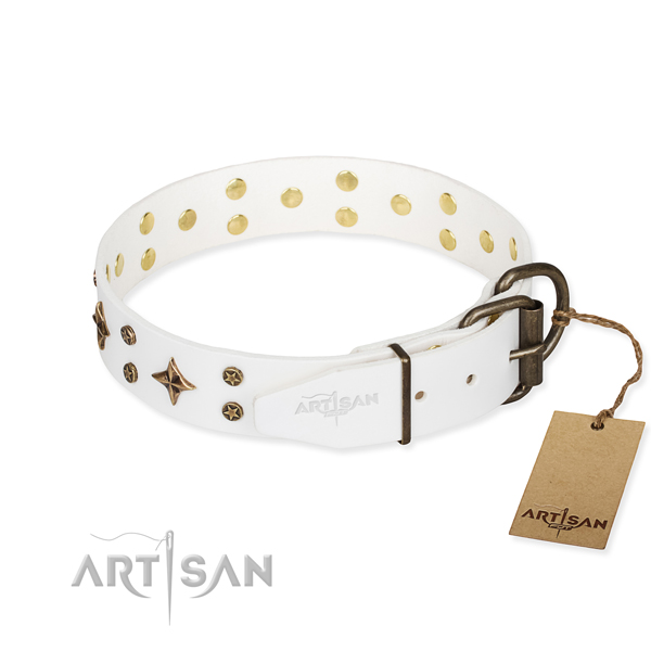 Everyday use full grain genuine leather collar with studs for your pet