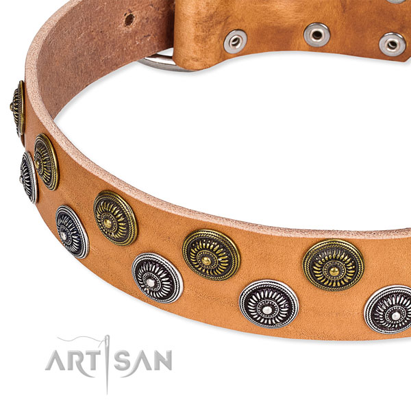 Genuine leather dog collar with unique studs