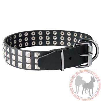 Dog leather collar reliable tool