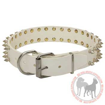 Dog leather collar with rust proof buckle and D-ring