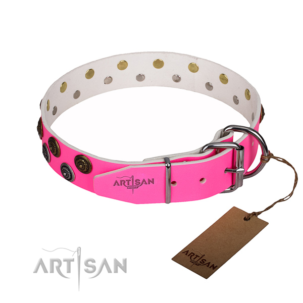 Walking full grain genuine leather collar with adornments for your doggie