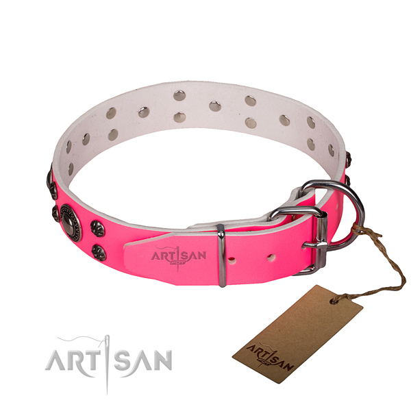 Daily use full grain natural leather collar with corrosion proof buckle and D-ring