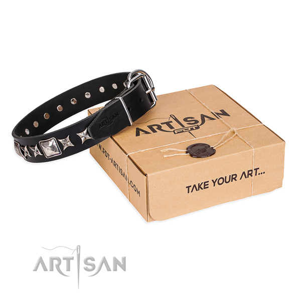 Studded genuine leather dog collar for walking