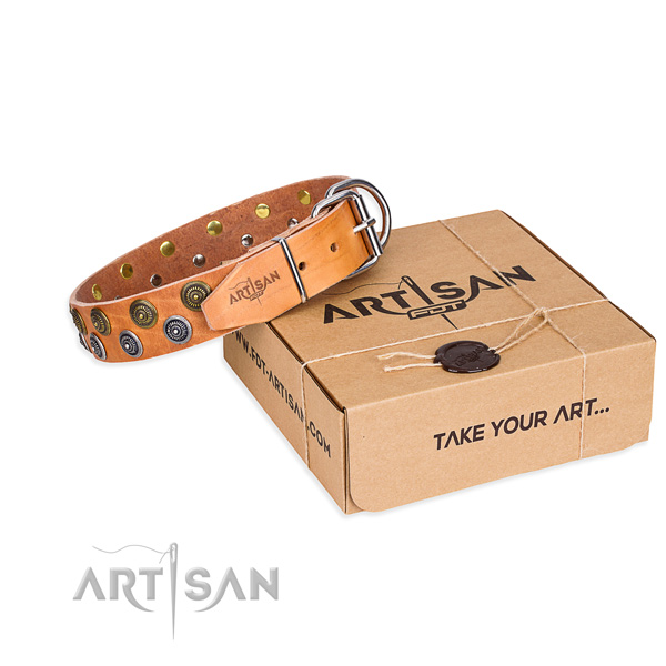 Full grain leather dog collar with adornments for walking