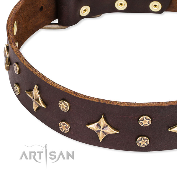 Full grain genuine leather dog collar with trendy studs