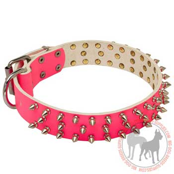 Dog leather collar attractive design