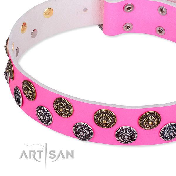 Full grain leather dog collar with unusual embellishments