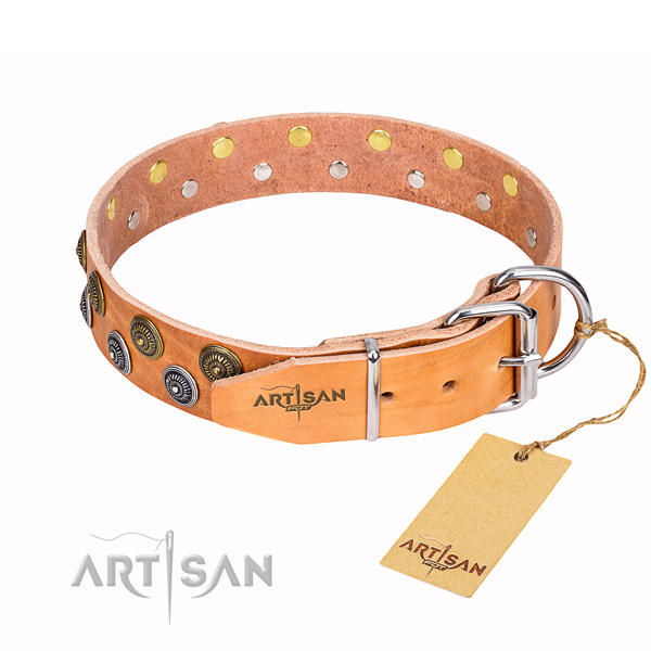 Everyday walking full grain genuine leather collar with decorations for your canine
