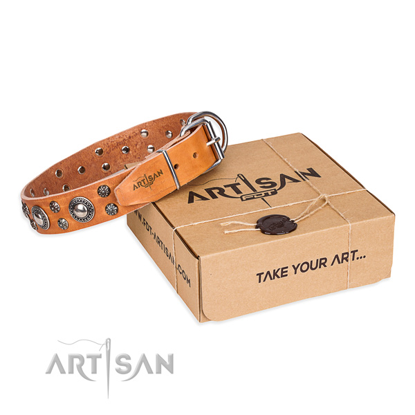 Top notch leather dog collar for stylish walks
