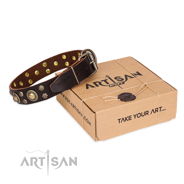Fine quality full grain natural leather dog collar for walking in style