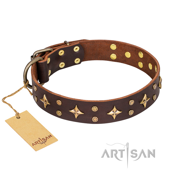 Remarkable leather dog collar for daily use