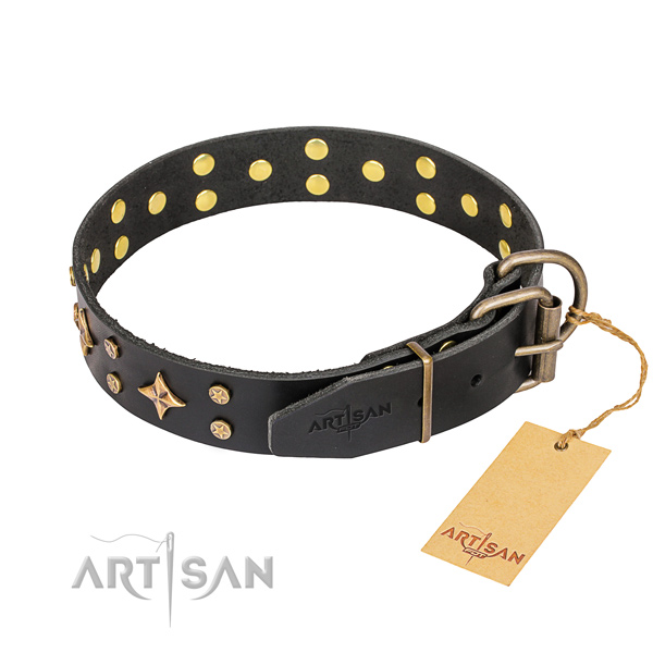 Daily walking full grain leather collar with studs for your canine