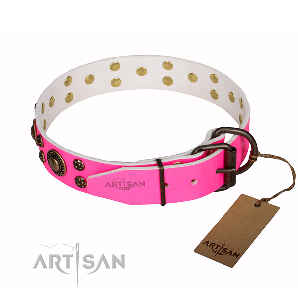 Impressive leather dog collar for everyday use