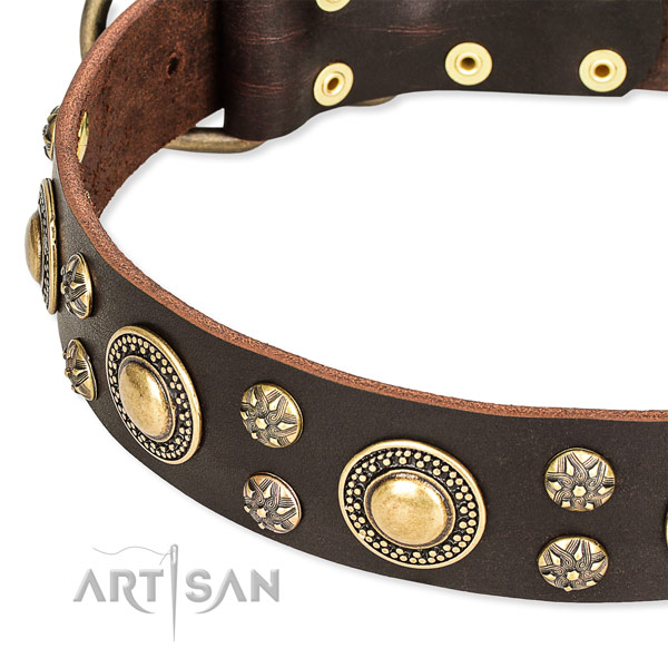 Leather dog collar with top notch adornments