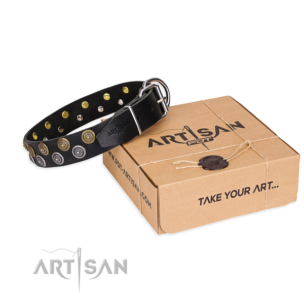 Natural genuine leather dog collar with adornments for stylish walking