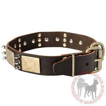 Dog collar of leather with strong buckle