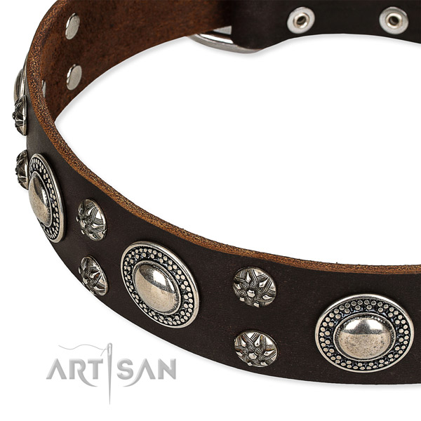 Easy to put on/off leather dog collar with extra sturdy durable fittings