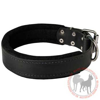 Dog leather collar wide for training walking