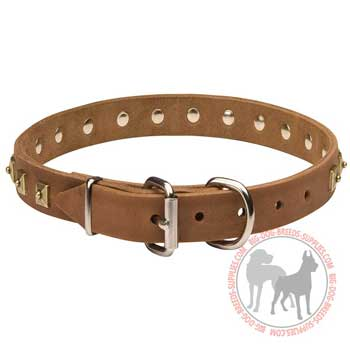 Dog leather collar adjustable with buckle
