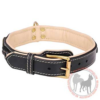 Leather Collar with Strong Hardware