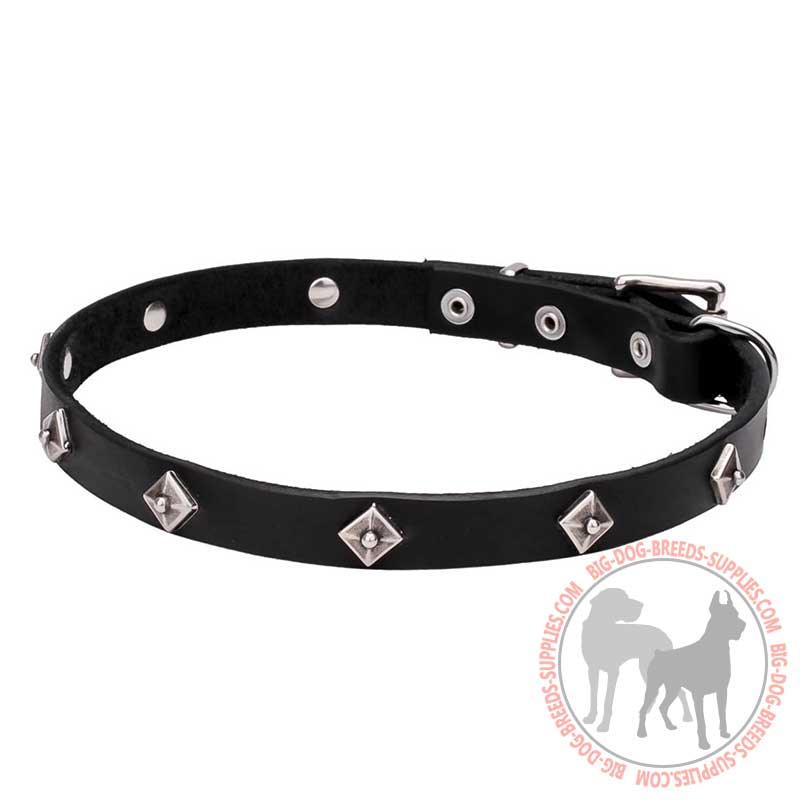 Dog Collar Tan With Studs With Reflection