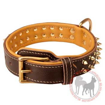 Dog Leather Collar Nappa Padded