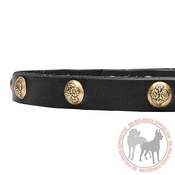 Leather Collar for Canine Trendy Walking