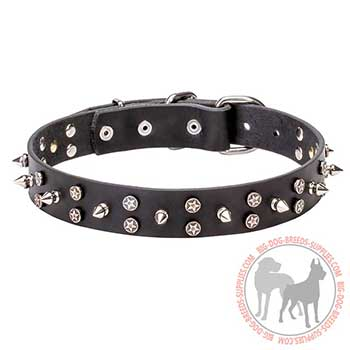 Strong Leather Collar with Spikes and Stars