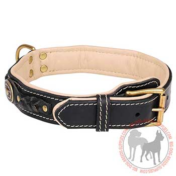 Reliable Leather Collar with Strong Hardware