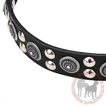 Leather Dog Collar with Special Design