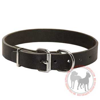 Leather buckle dog collar easy adjustable