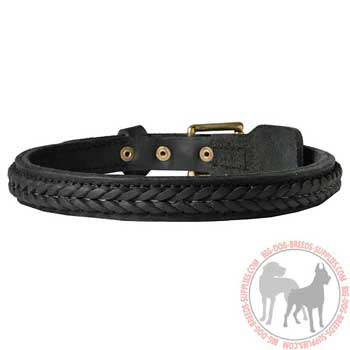 Leather Collar for Canine Training and Daily Walks