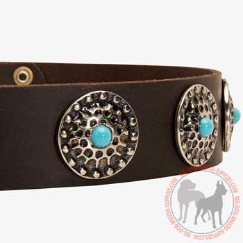 Stidded Leather Canine Collar
