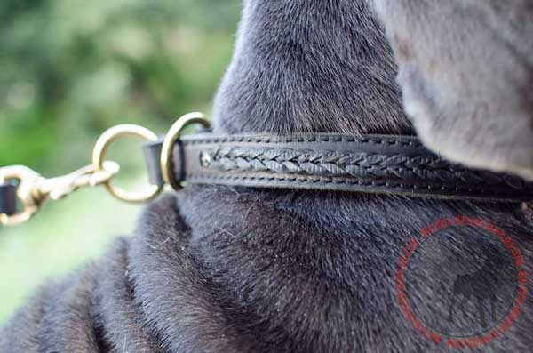 Choke Canine Collar Leather Made