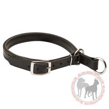 Leather choke dog collar for effective training