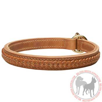 Durable Leather Choke Dog Collar for Training