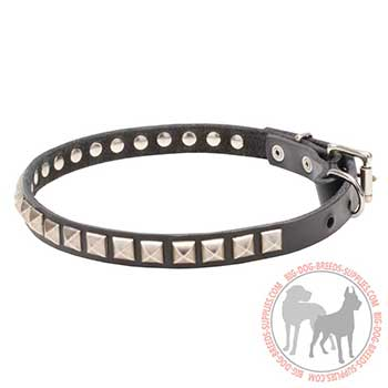 Leather Collar for Canine Trendy Performing