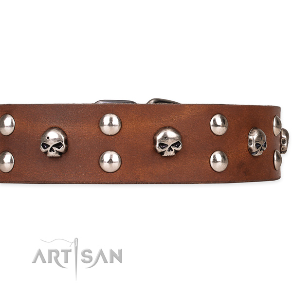 Full grain leather dog collar with smooth leather surface