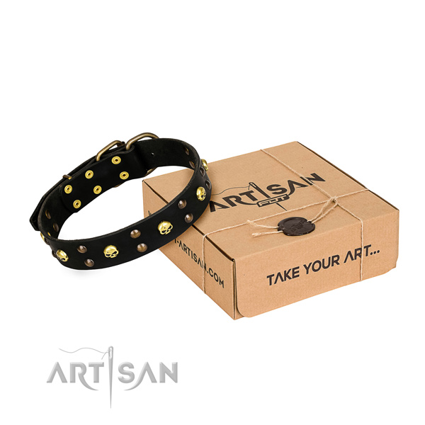Reliable leather dog collar with reliable fittings