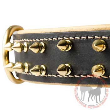 Spiked Leather Collar for Dog Fashionable Walking