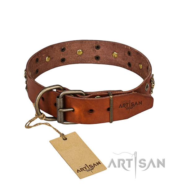 Strong leather dog collar with brass plated fittings