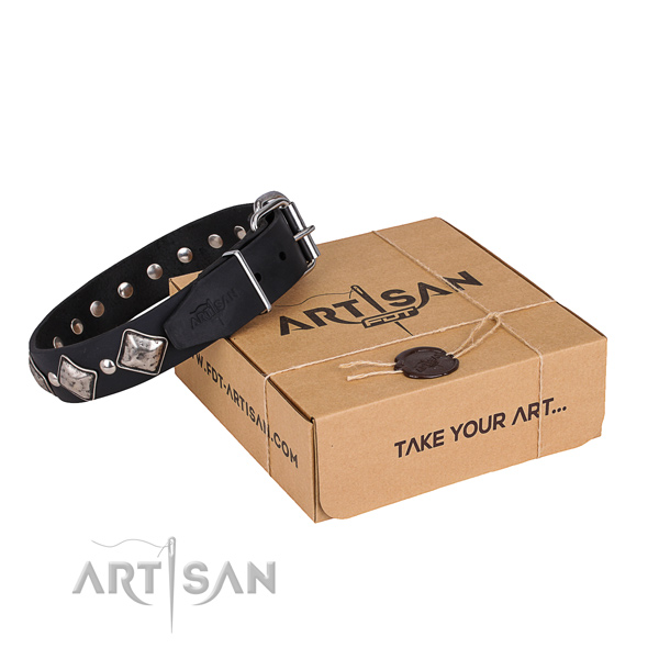 Casual style leather dog collar with amazing decorations