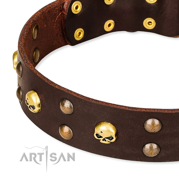 NaturalAwesome leather dog collar for reliable usage