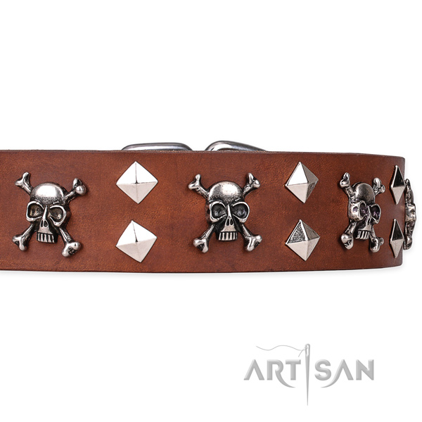 Day-to-day leather dog collar with unique design studs