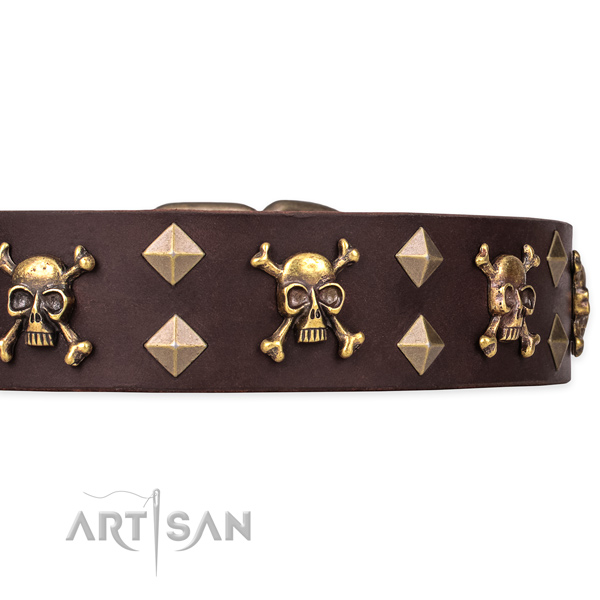 Best quality leather dog collar for stylish walks